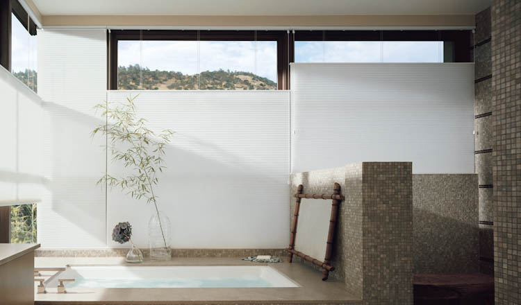 Window Shades in bathroom