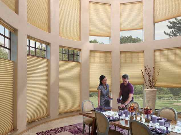 Duette Honeycomb Shades - Trielle