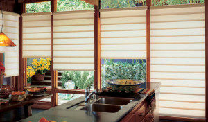 Understanding Window Treatment Details with Options, Santa Monica CA