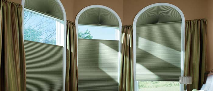 Duette® Honeycomb Blackout Shades